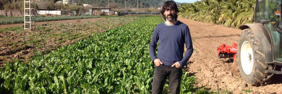 Agricultura ecològica, model de sostenibilitat