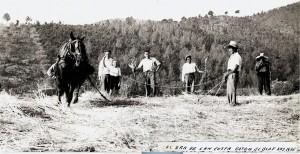 Era de Can Costa. Sant Vicenç dels Horts. 1943. AMSVH. Donación de la familia Font i Parés.